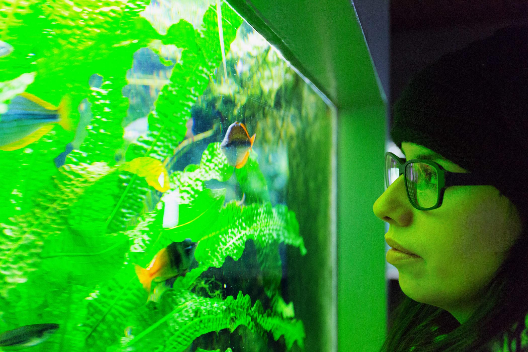 Frauenportrait mit Blick auf ein Aquarium voller Fische in der Wilhelma Stuttgart.